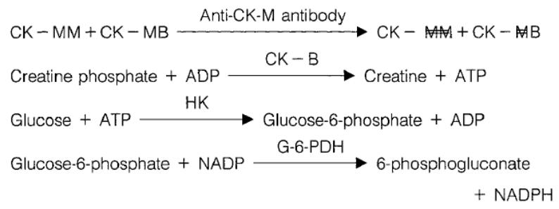 Creatine kinase MB (CK-MB) Principle of the Method