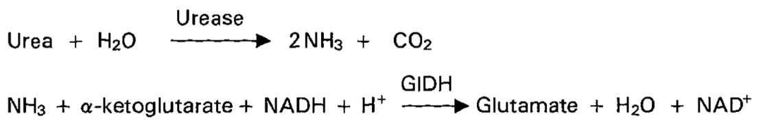 Urea Nitrogen (UN) Principle of the Method