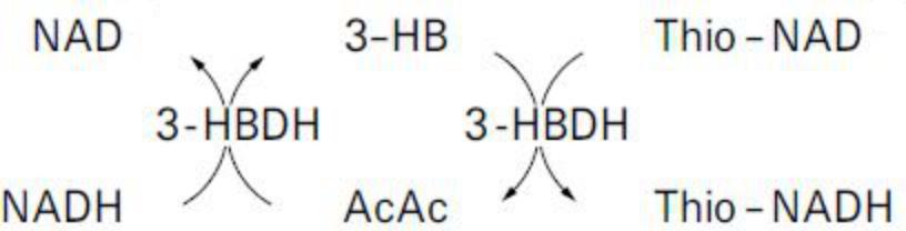 Total Ketone Bodies (T-KB) Principle of the Method